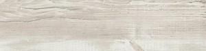 ABSB H1401 ST22 Sosna Cascina 43/2